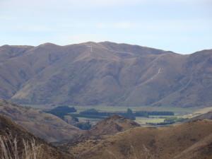New Zealand 186