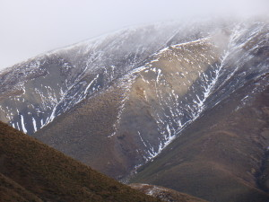 New Zealand 188