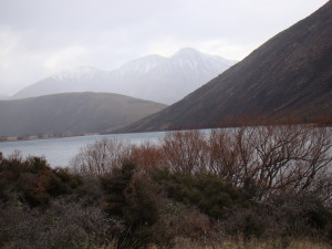 New Zealand 201